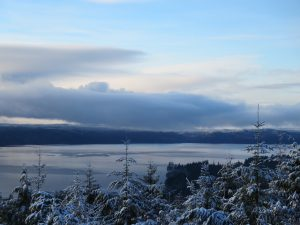 Hood Canal early March 2017